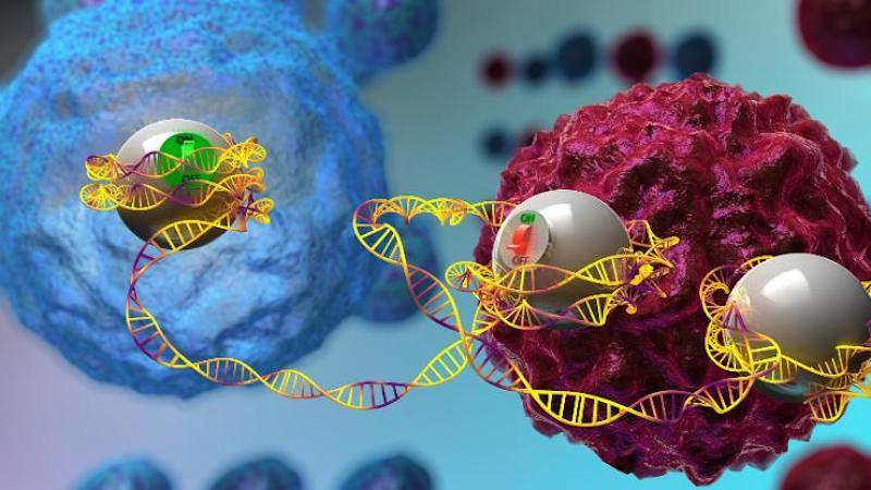 graphic rendering of the epigenome